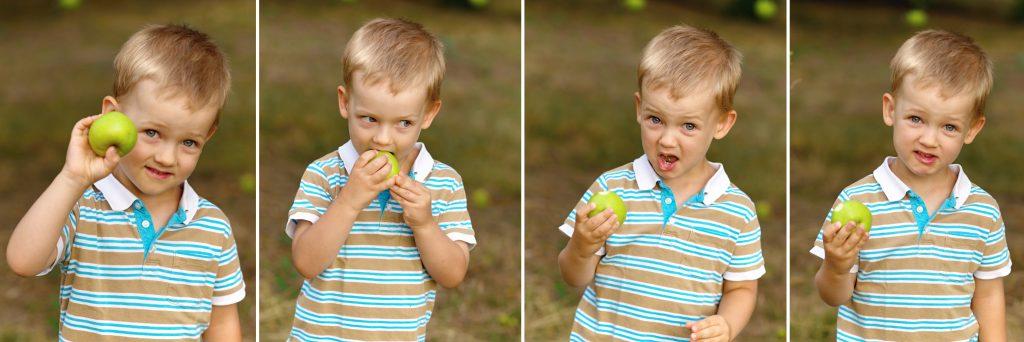 Když dozrávají jablíčka!